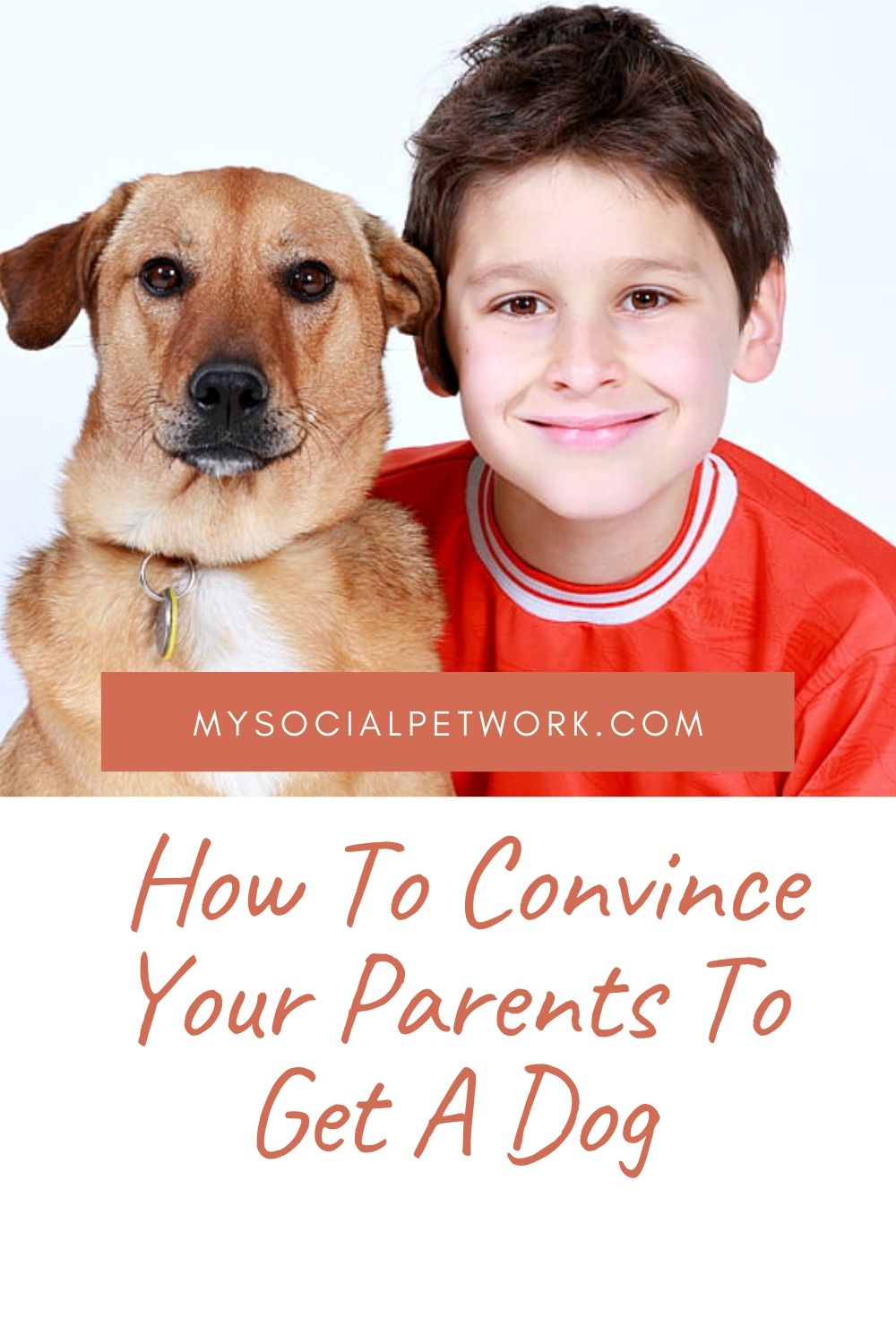 how-to-convince-your-parents-to-get-a-dog-5658976