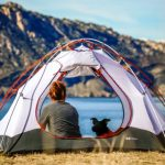 Guide for camping with dog - tips for a day of camping